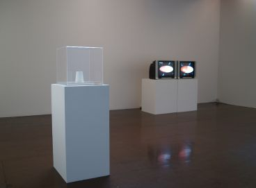 Euan MacDonald - Installation view of: The Field