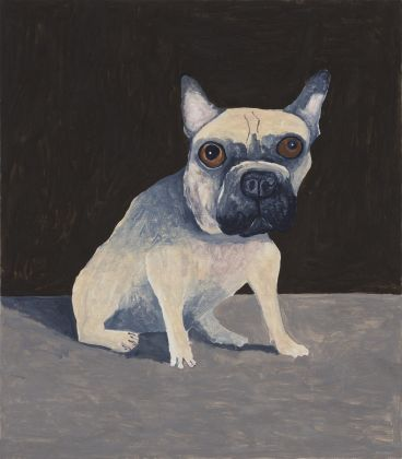 Noel McKenna - Don't Buy this Dog (French Bulldog NY)