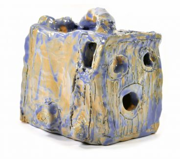 Alan Constable - Not titled (blue/apricot Box Brownie camera)